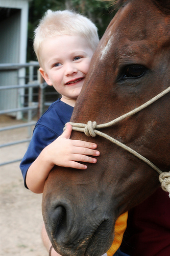 kid-hugging-horse.jpg