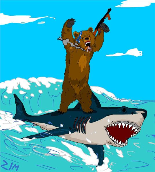 bear-surfing-shark.jpg