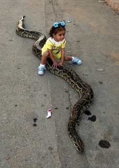 little-girl-riding-a-python.jpg