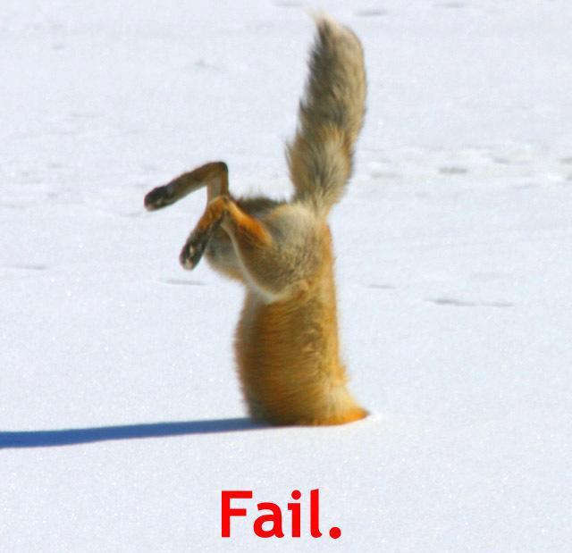 fox-fail.jpg