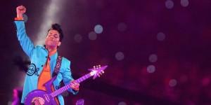 Prince amazing fit shot