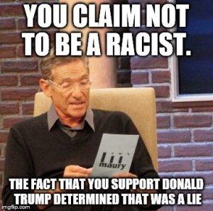 Trump idiots racist funny